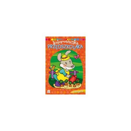 Kolorowanka przedszkolaka zeszyt 4 |Książeczka dla dzieci |Edukacja